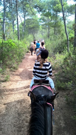 Näin sitä mennään. Mukana on aloittelijoita ja ensikertalaisia. Hevoset ovat kesyjä ja tottuneet kulkemaan peräkkäin. Alussa ne vähän hakevat paikkaansa, koska niillä on tarkka hierarkia.