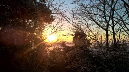 Halo vai aurinko?