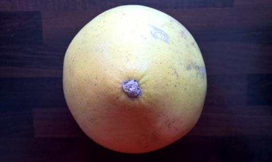 Melkoinen mollukka. Voi painaa parikin kiloa. Viimeksi M-kaupasta osamani maksoi alle 2 euroa.