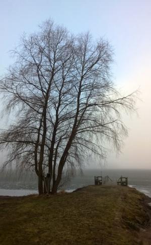 Aamuinen maisema. Lautsian Lomakeskus, Hauho.