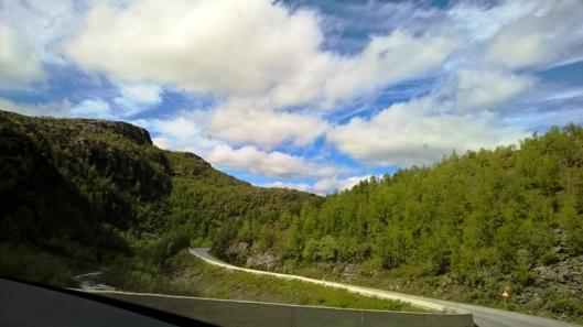 Altaa lähestyttäessä maisema vehreytyi ja puut alkoivat kasvaa suuremmiksi. Altaan tullessa alkukesäiset lämpöasteetkin olivat kohonneet reiluun 20 asteeseen. Golfvirtako se meitä lämmitti vai mikä lie paikallinen helleaalto?